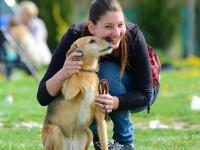 Kutyakiképző tanfolyam