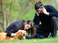 Habilitációs kutya kiképzője képzés