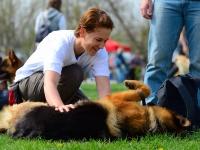 Habilitációs kutya kiképzője OKJ