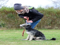 Habilitációs kutya kiképzője OKJ tanfolyam