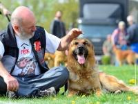 Habilitációs kutya kiképzője OKJ képzés