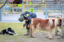 Állatgondozó OKJ képzés